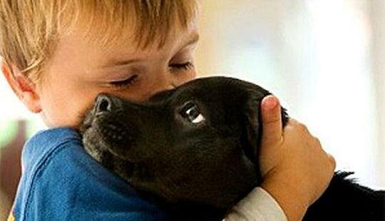 Ребенок обнимает пса
