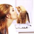 Кошка и её хозяйка